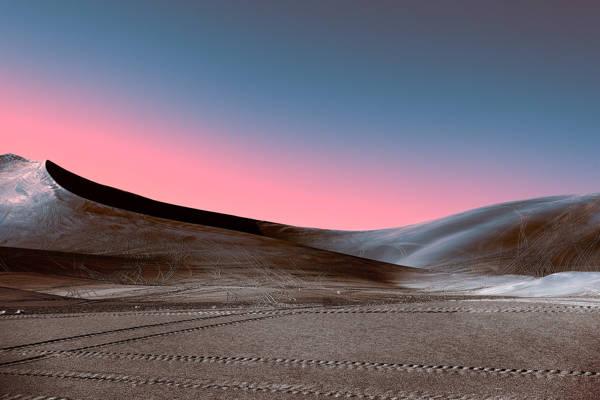 Stefano Gardel - Neon Desert 2 | blinq.art