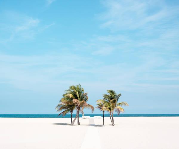 David Behar - Lauderdale Palms   blinq.art