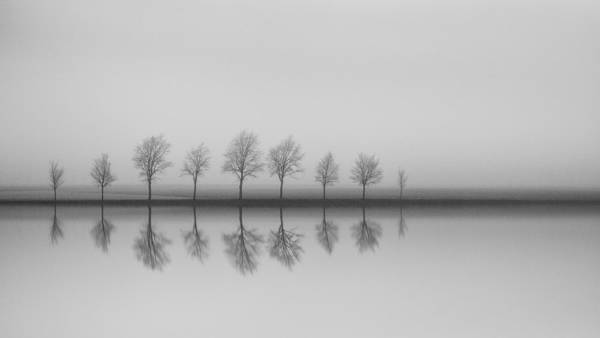 Frank Van Es - Reflections IV | blinq.art