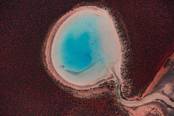 Remy Gerega - Shark Bay 2 | blinq.art