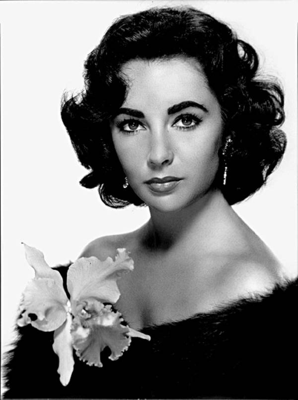 Anonymous Artist - Elizabeth Taylor I | blinq.art