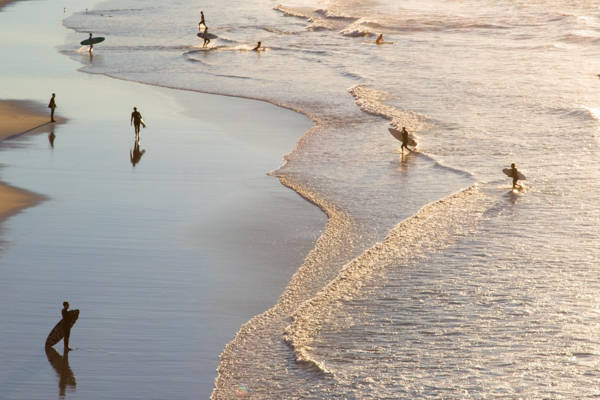 Amaury Treguer - Shorey Activity   blinq.art
