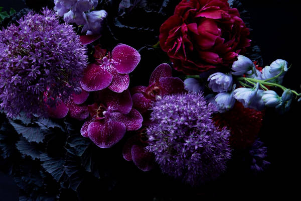 Dylan Demarchi - Renaissance 2 | blinq.art