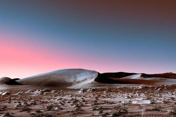 Stefano Gardel - Neon Desert 5 | blinq.art