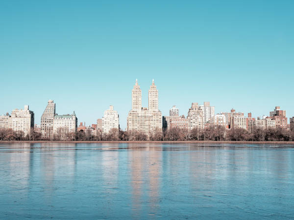 Ludwig Favre - Central Park | blinq.art