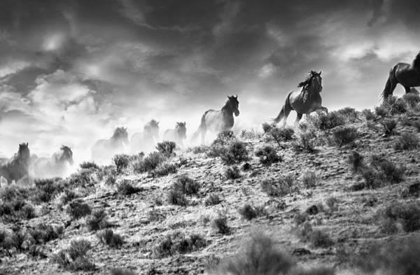 Tony Stromberg - Desert Storm | blinq.art