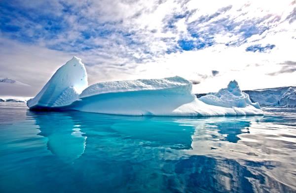 Mark Fitzsimmons - Antartica Iceberg | blinq.art