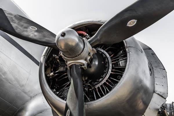 Gary Sheppard - Engine Douglas DC3 I