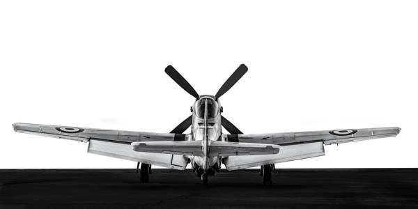 Gary Sheppard - Rear view P-51D Mustang II