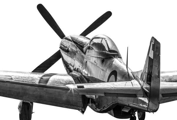 Gary Sheppard - Rear view P-51D Mustang I