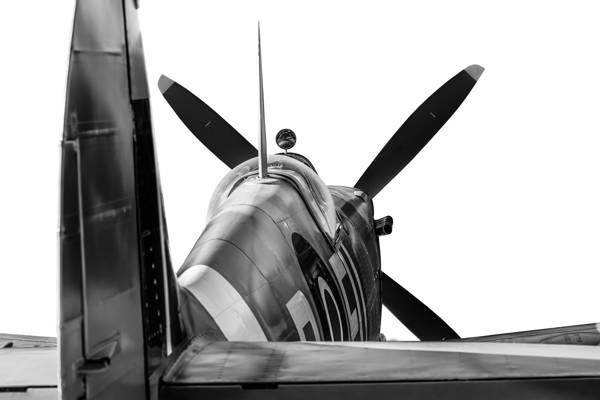 Gary Sheppard - Rear view Spitfire