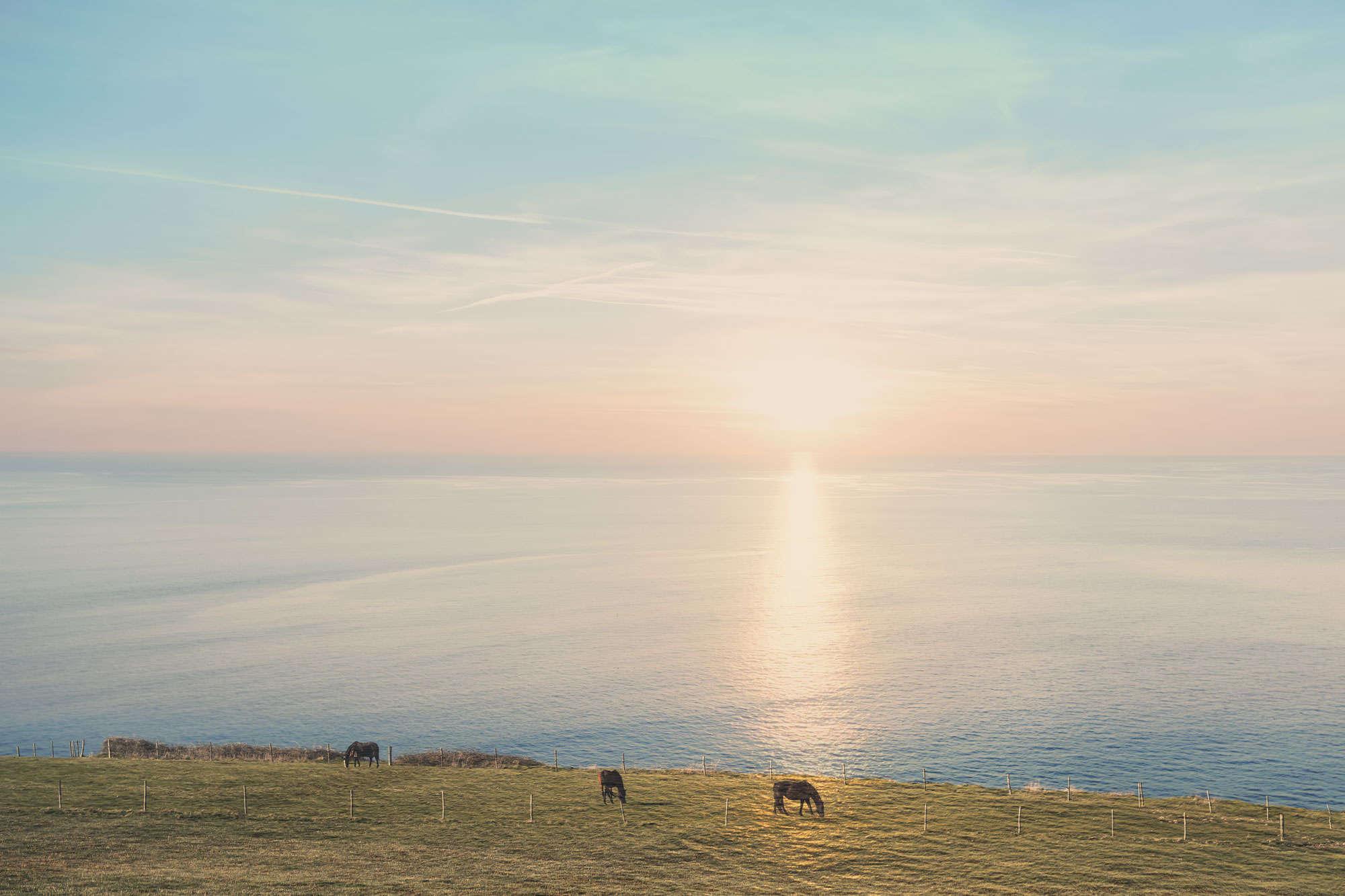 Nicolas Mithois - Sunset Horses