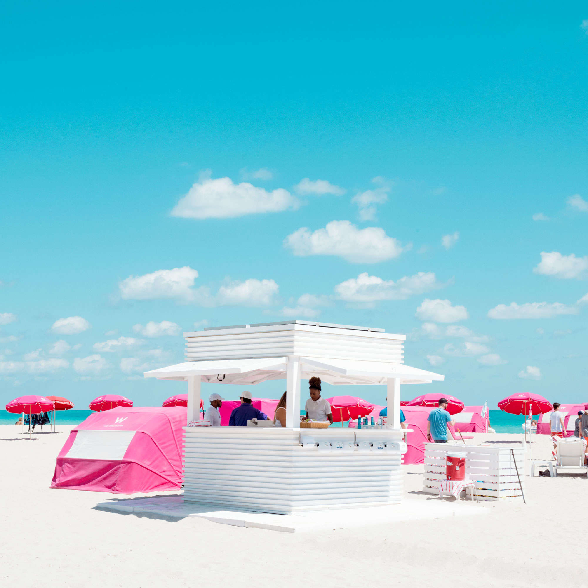 David Behar - Pink and white
