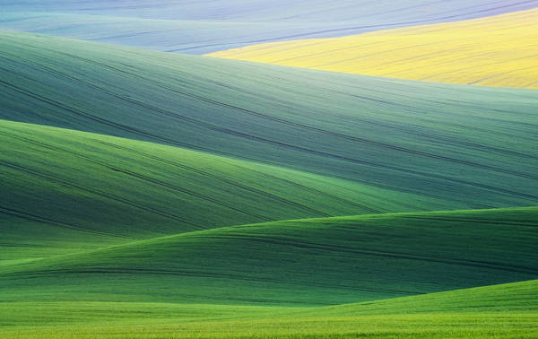 Ales Komovec - South Moravia | blinq.art