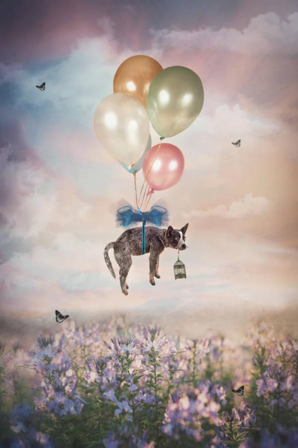 Carola Kayen-Mouthaan - Balloon Puppy