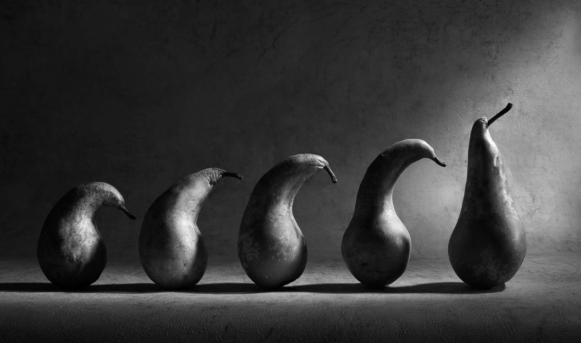 Victoria Ivanova - Growing Stages
