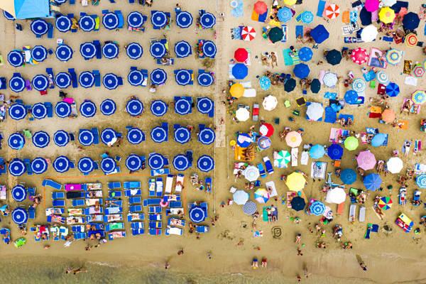 David Lopresti - Blue Rank   blinq.art