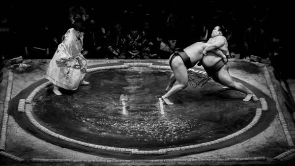 Gunarto Song  - Sumo Vs Sumo | blinq.art