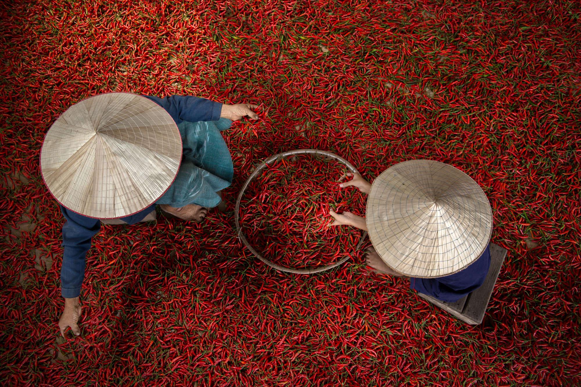 Sarawut Intarob - Red Hot