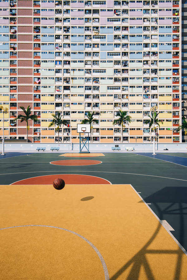 Kevin Jiang - Basketball Candy | blinq.art