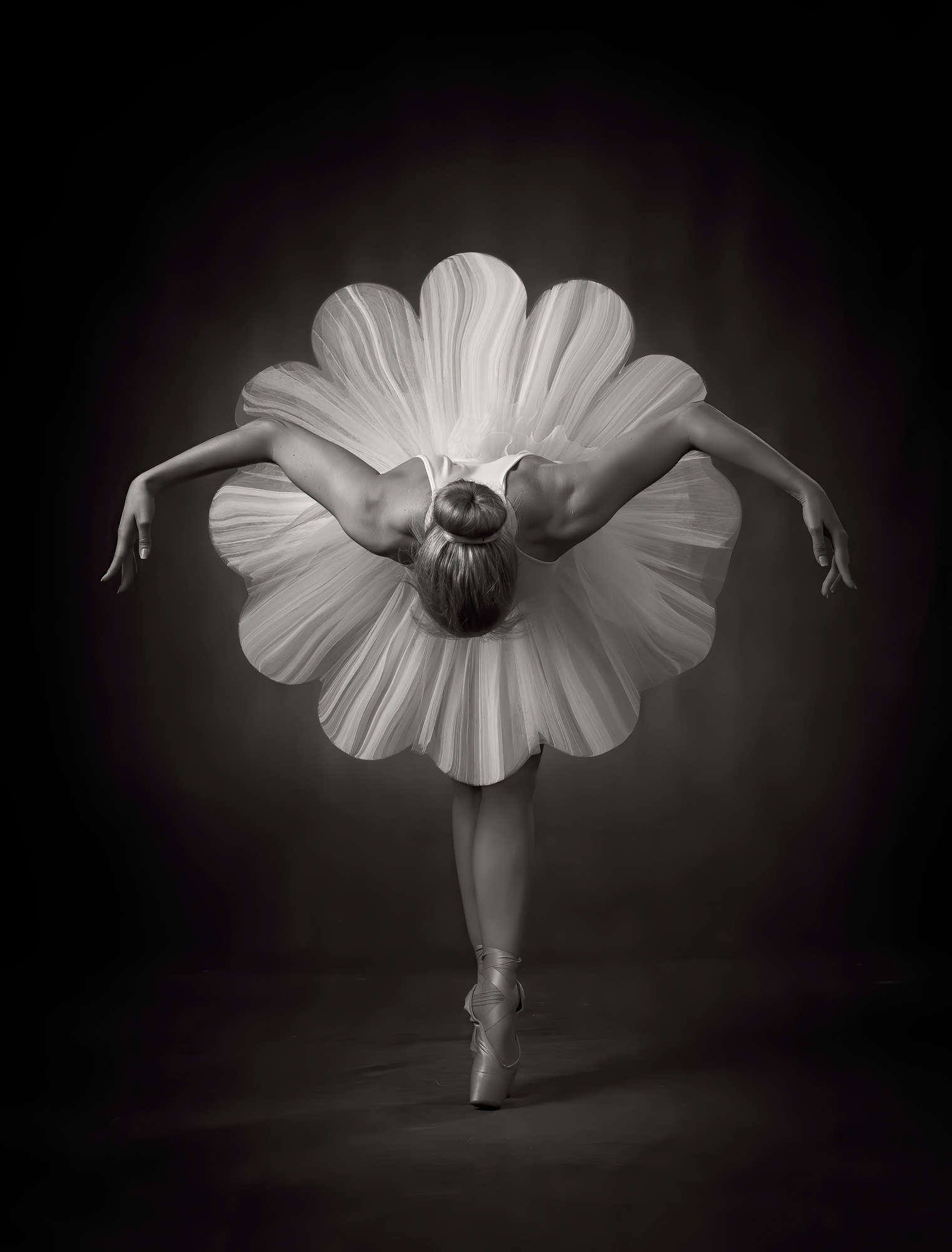 Ross McKelvey - Ballet Flower