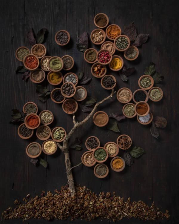 Diana Popescu - Spice Tree | blinq.art