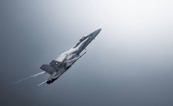Leon - Fighter Jet | blinq.art